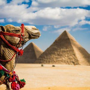Корисні поради туристам в єгипті